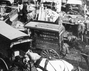 Copy of Saratoga Chip small